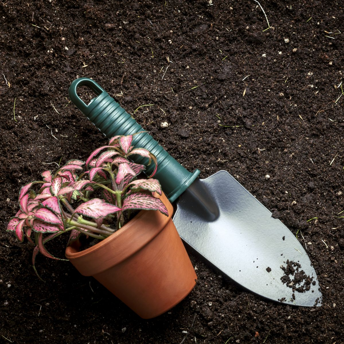 Hereford Garden Tools