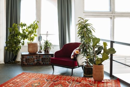 Indoor Style: Hippy Chic